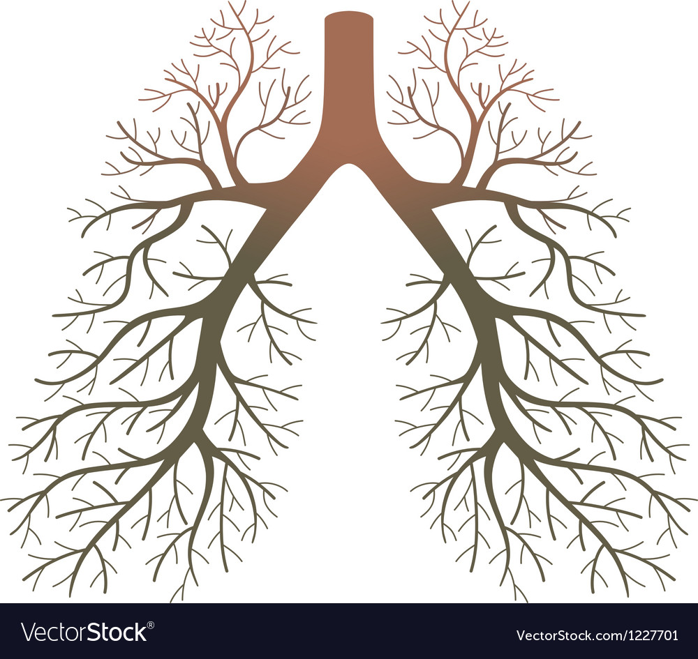 Lung patients vector