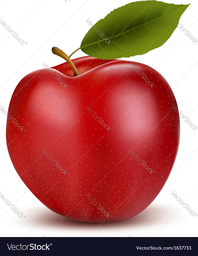 Set of red and green apple fruits with cut and vector