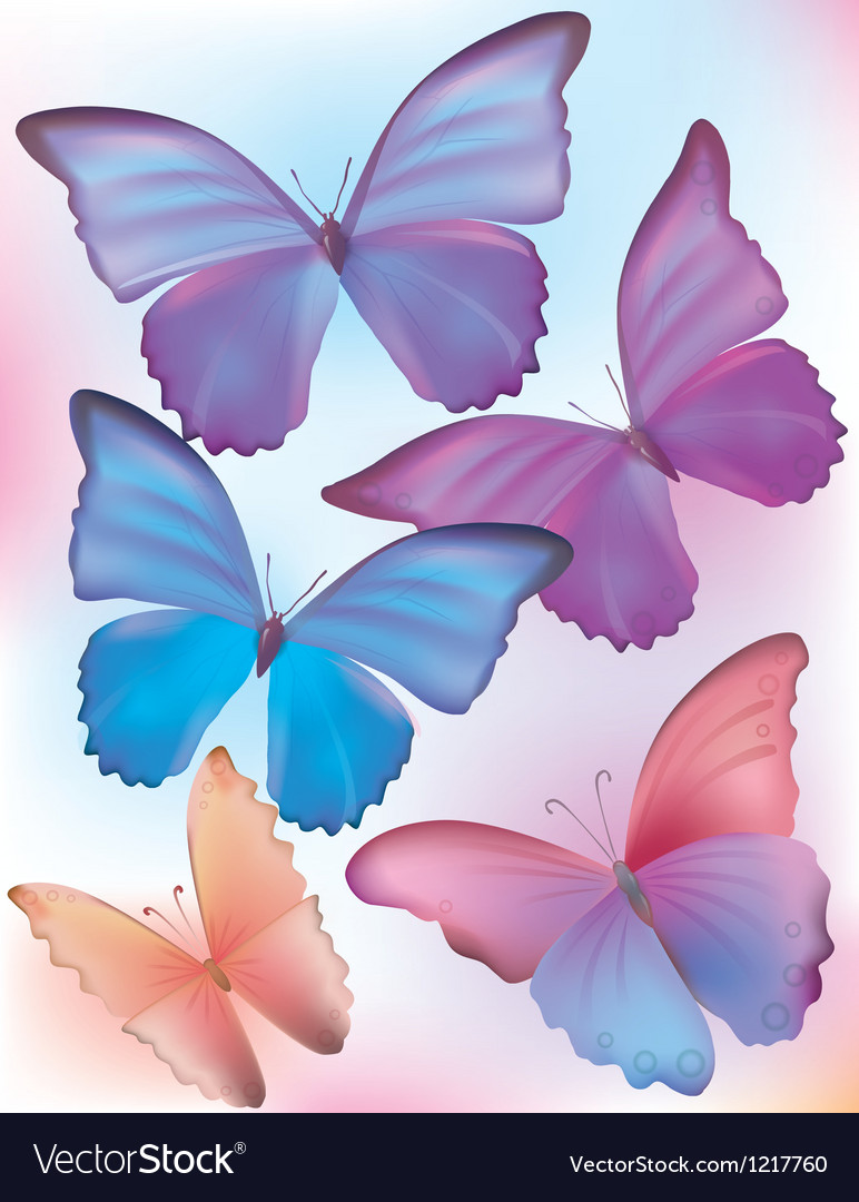 Beautiful blue butterfly vector