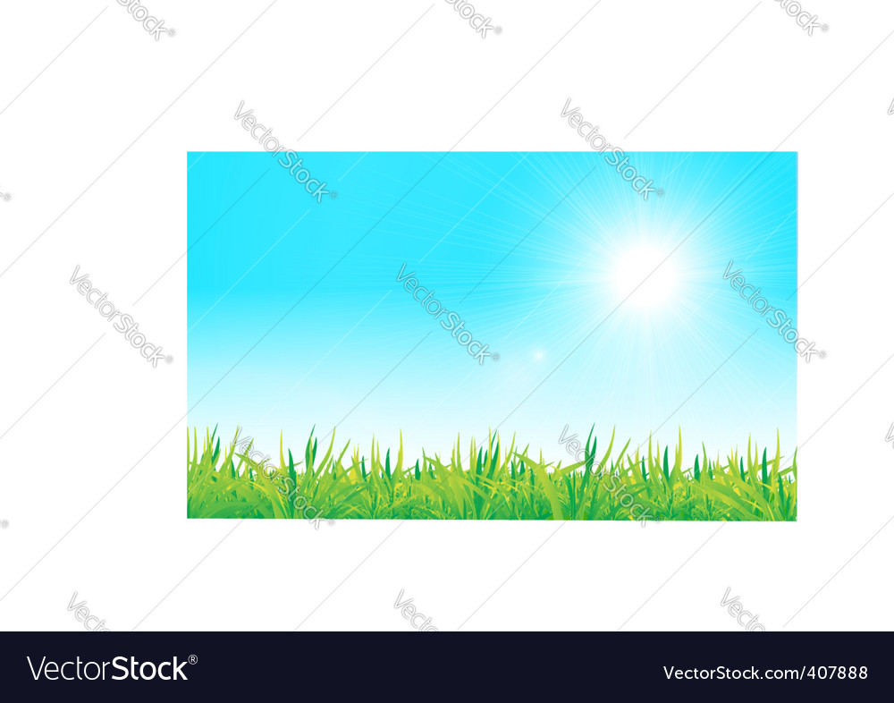 Grass and sky vector