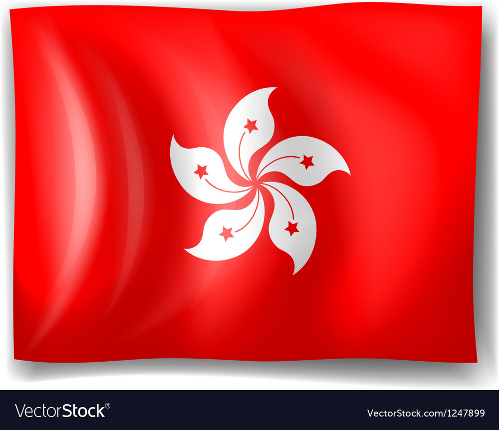 Flag of hongkong vector