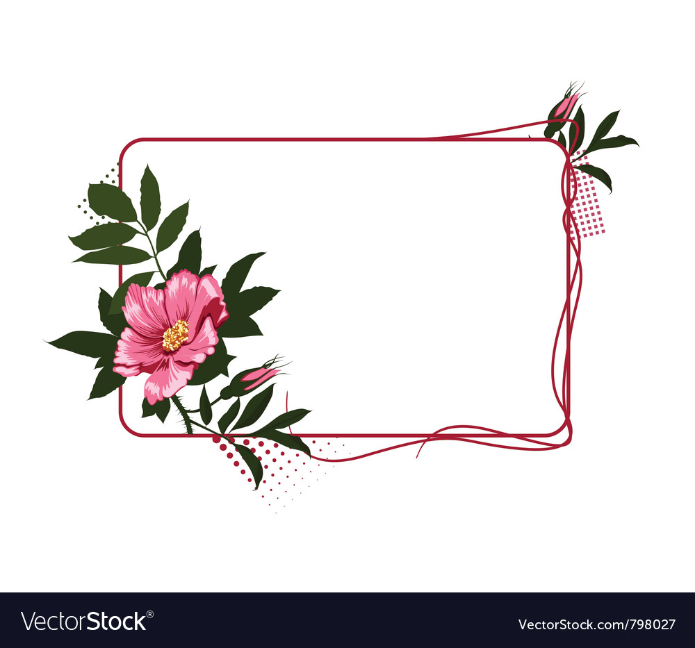 Frame with the wild pink roses vector