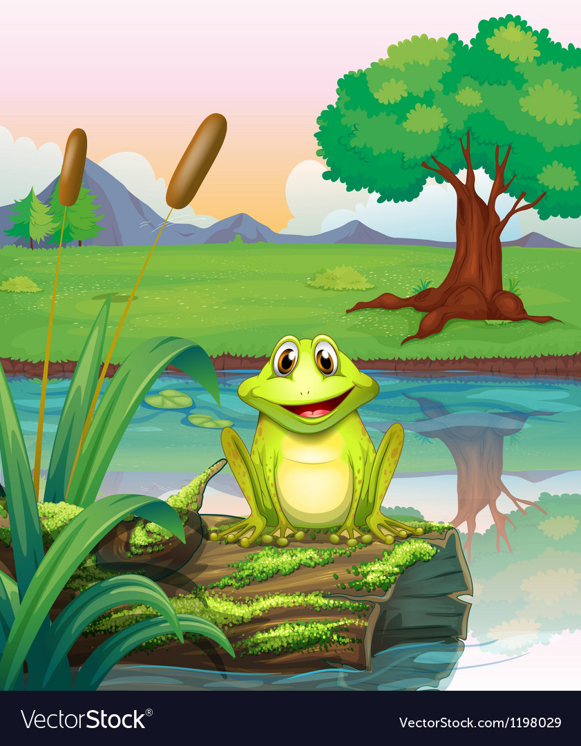 A frog at the lake vector