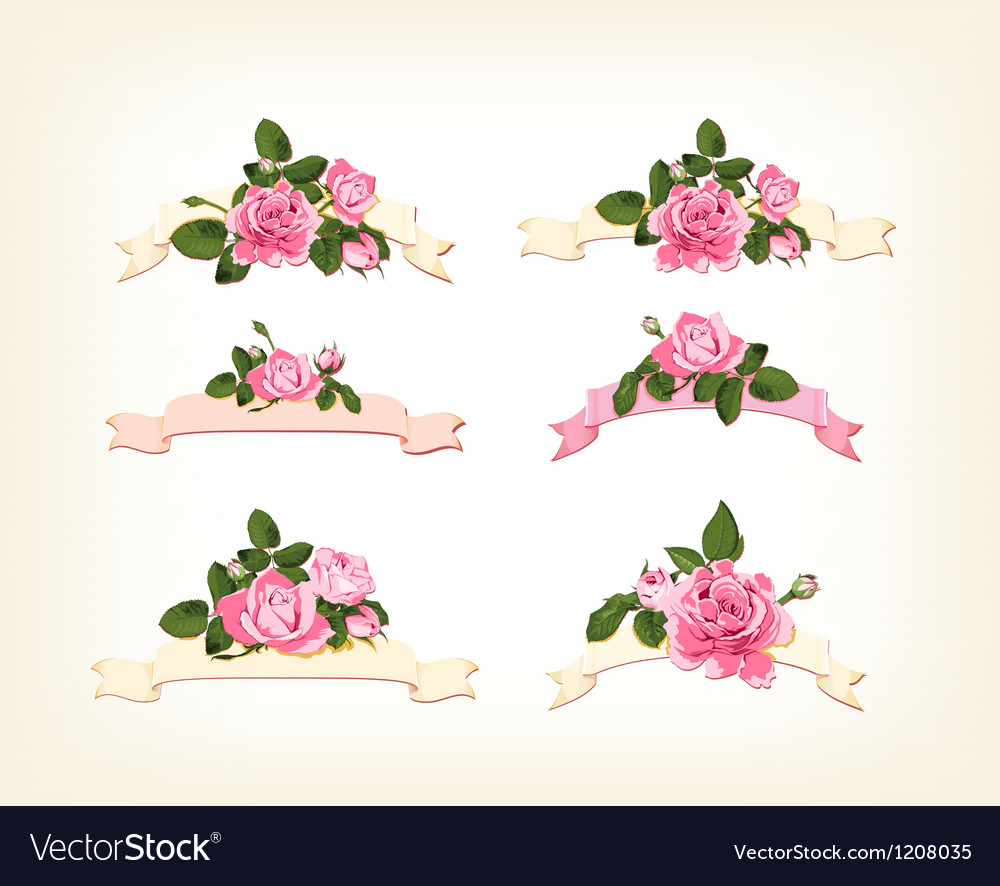 Set of a beautiful colored roses vector
