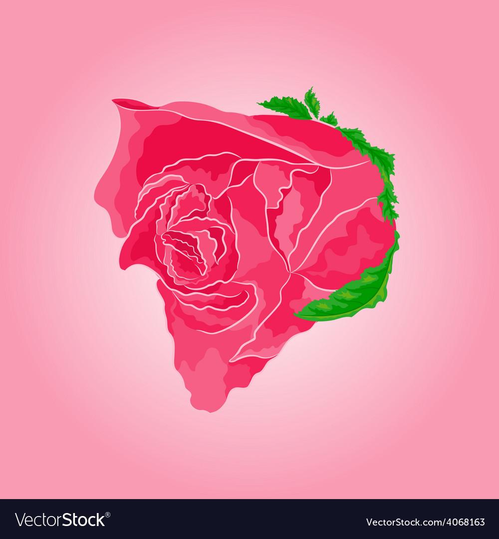 Beautiful rose simple symbol of love