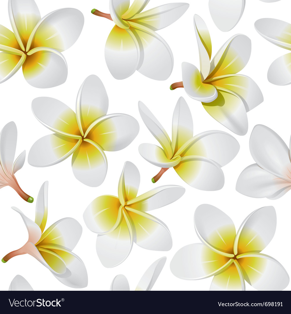 Tropical flowers seamless vector
