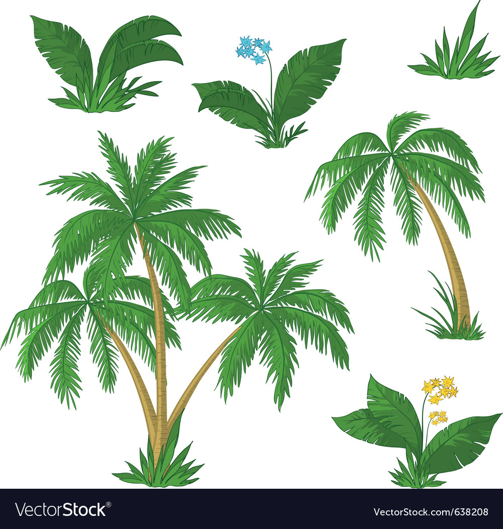 Palm trees flowers and grass vector