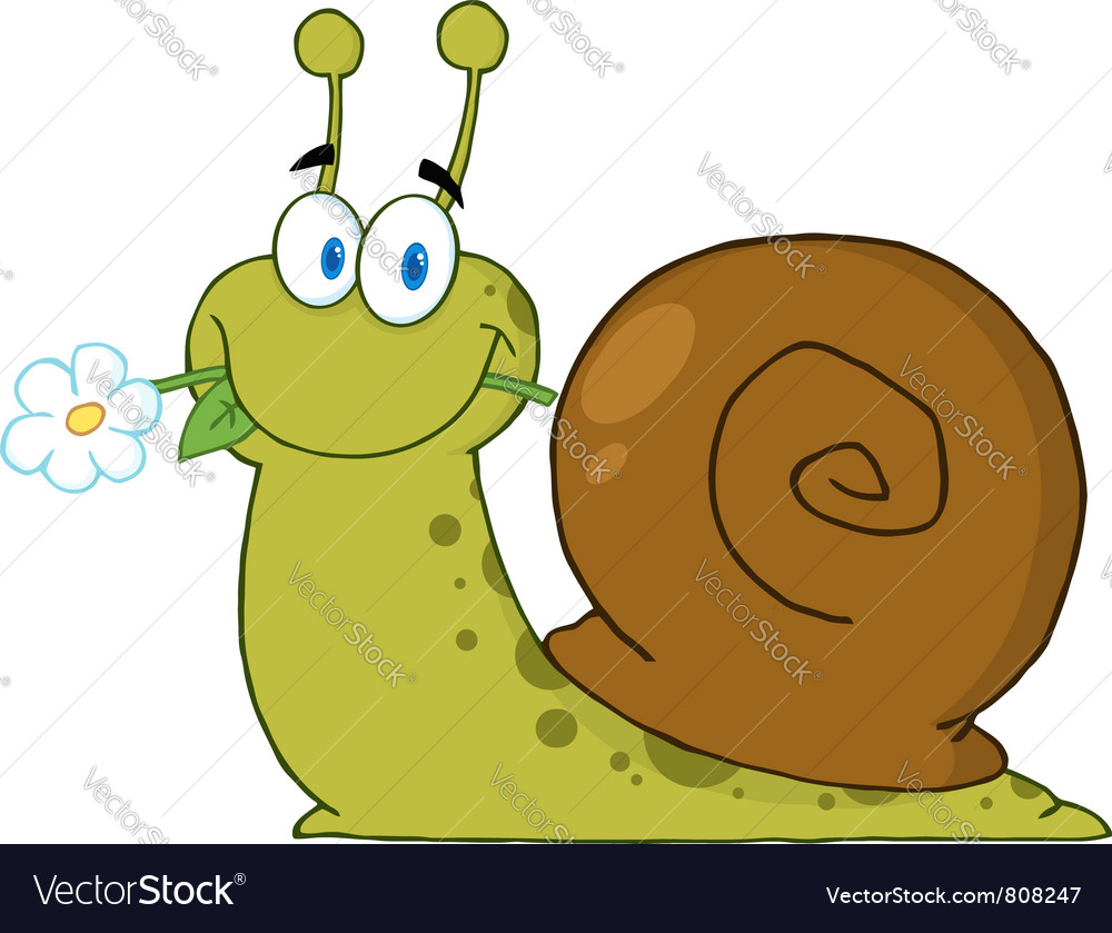 Snail with a flower in its mouth vector