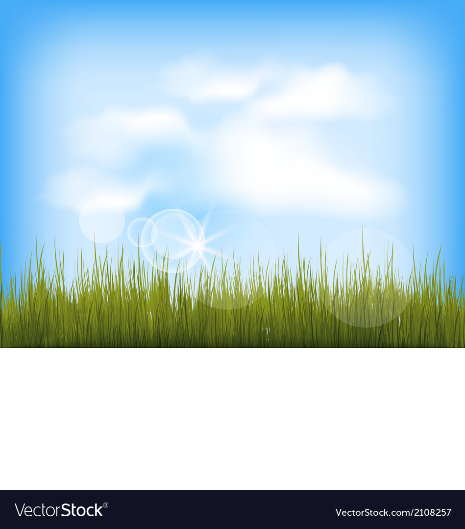 Summer background with green grass blue sky clouds