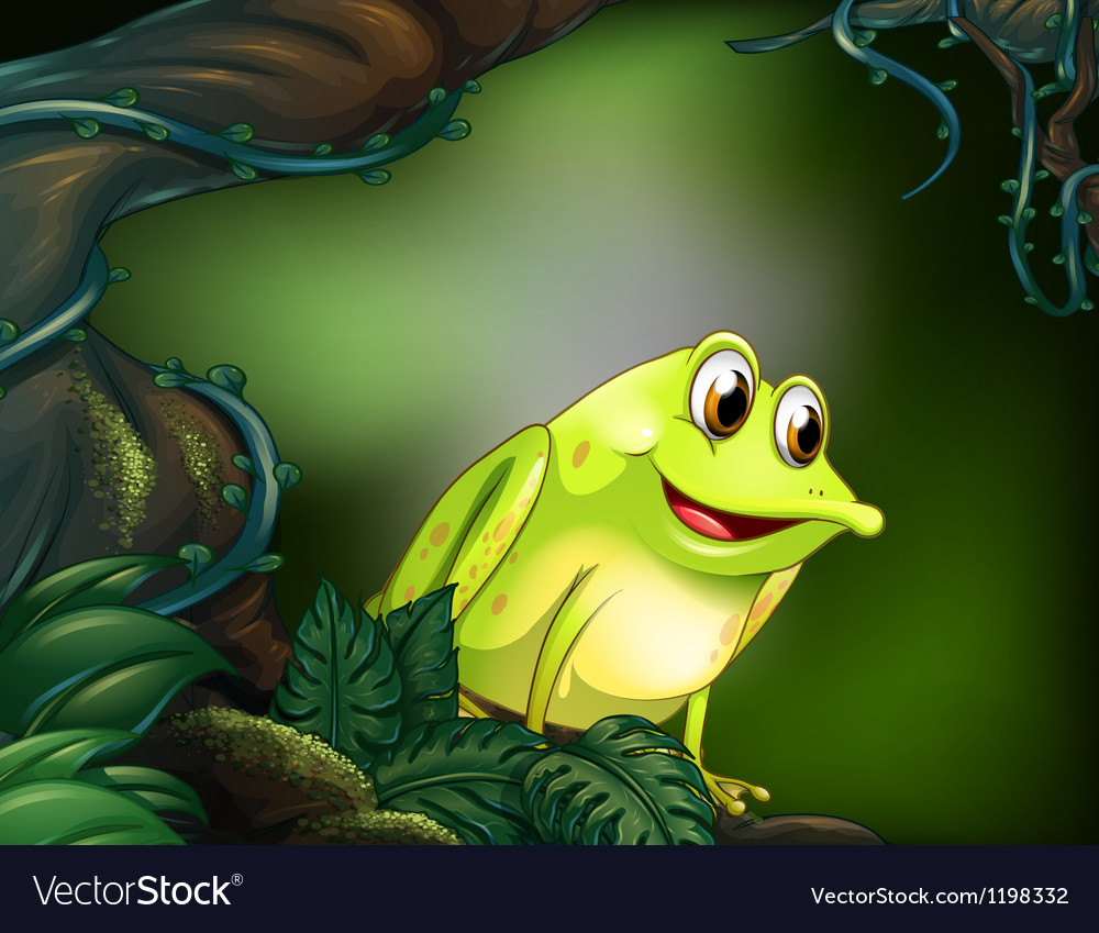 A frog at the rainforest vector