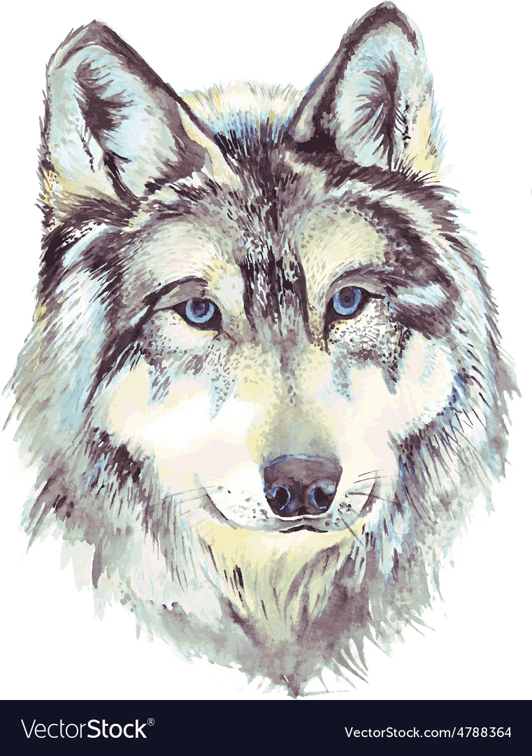 Wolf head profile Royalty Free Vector Image - VectorStock