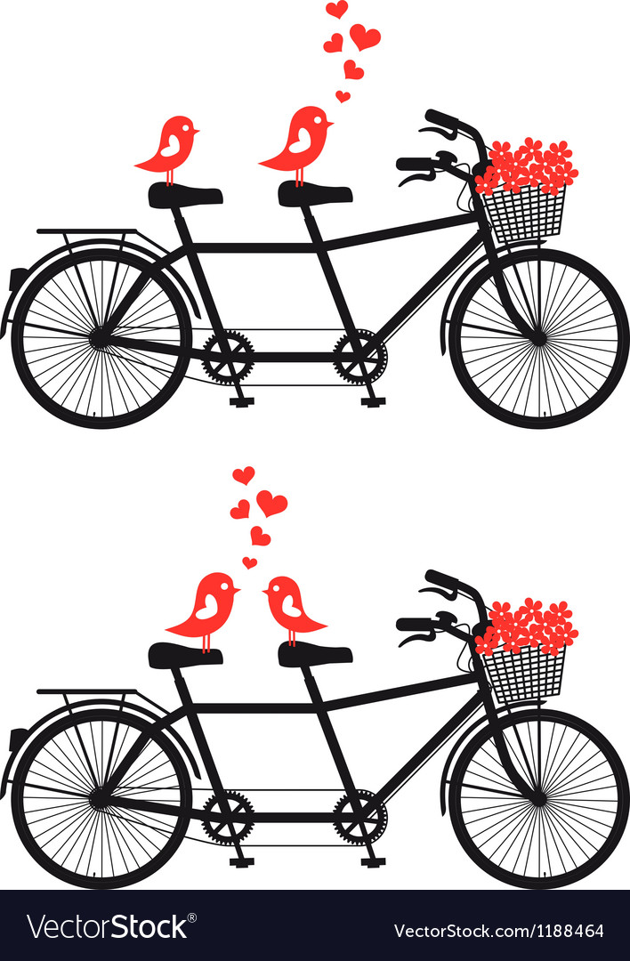 Tandem bicycle with birds in love vector
