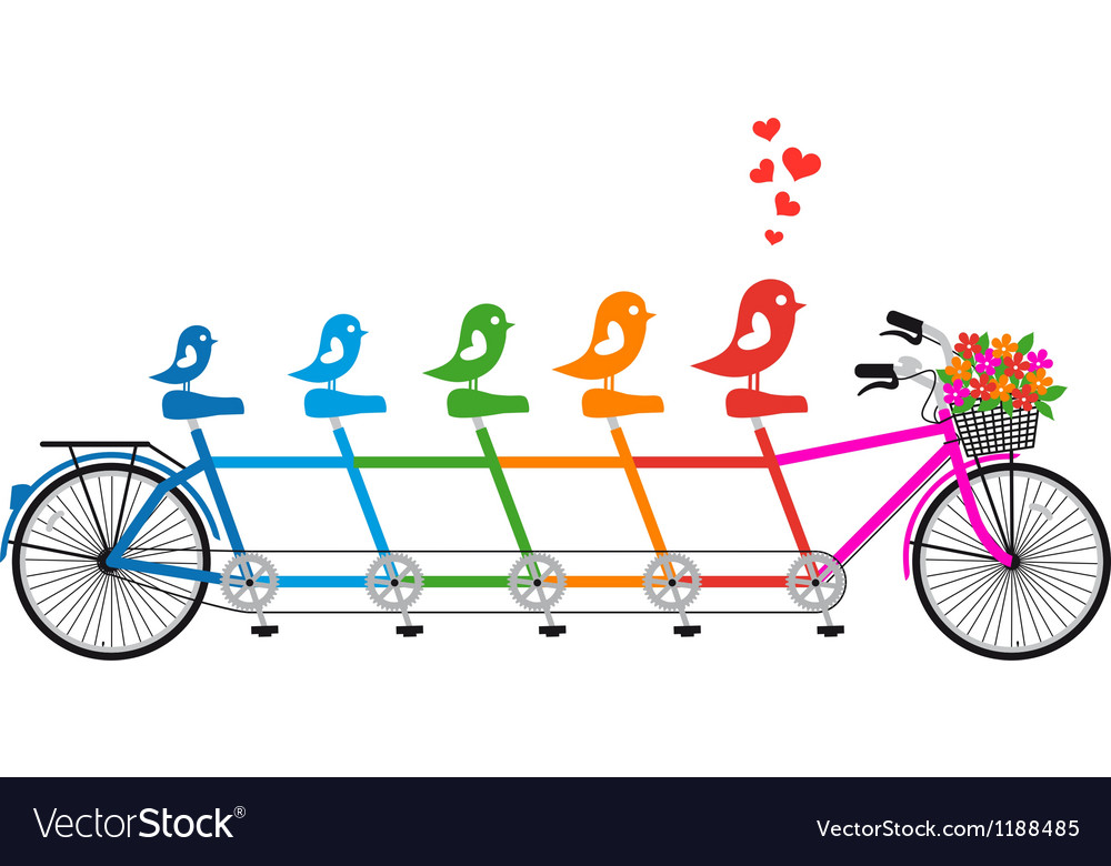Tandem bicycle with birds family vector