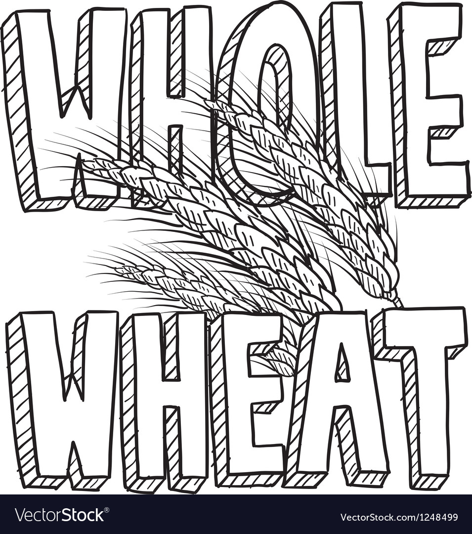 Whole wheat vector