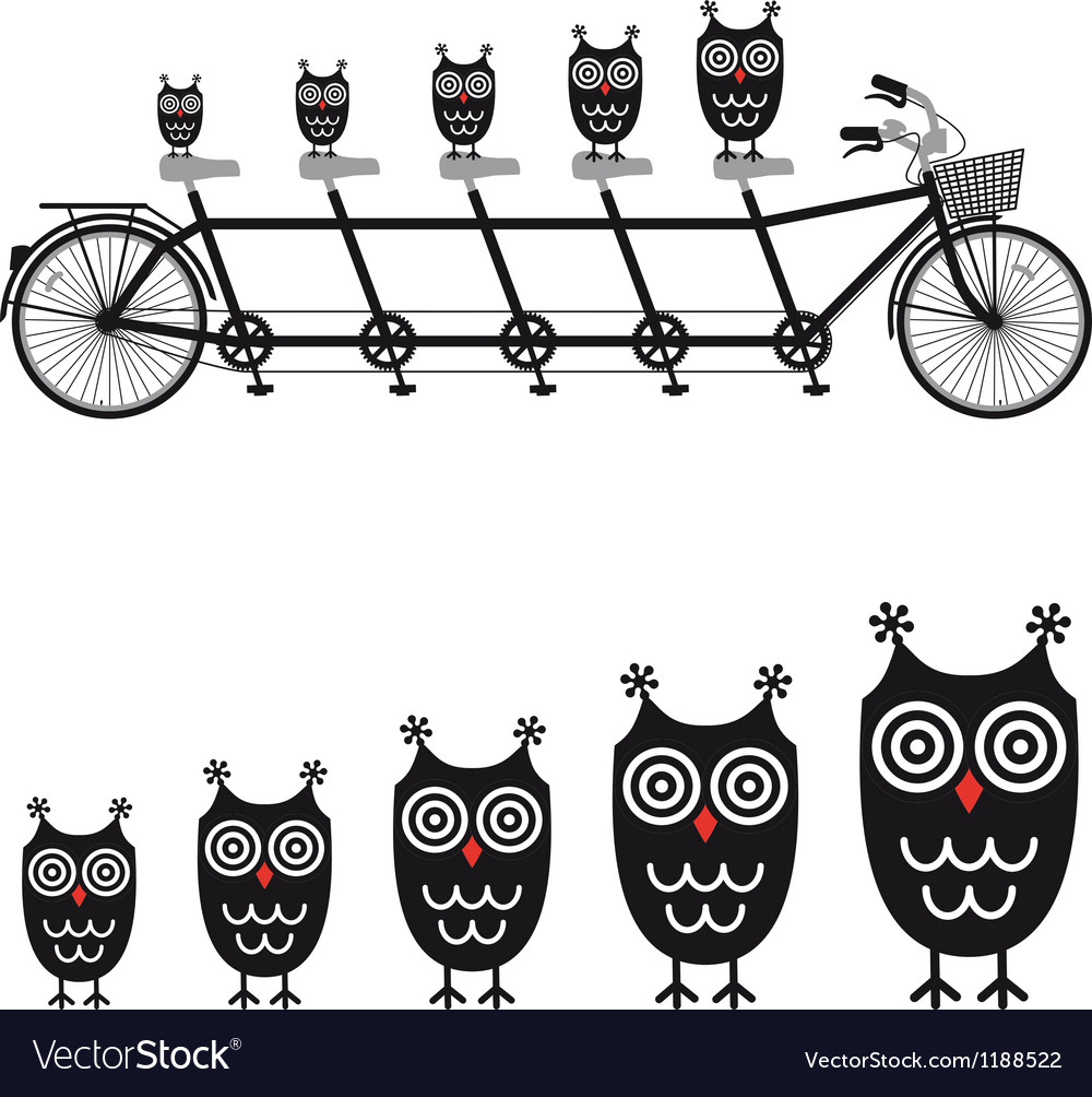 Cute owls on tandem bicycle vector