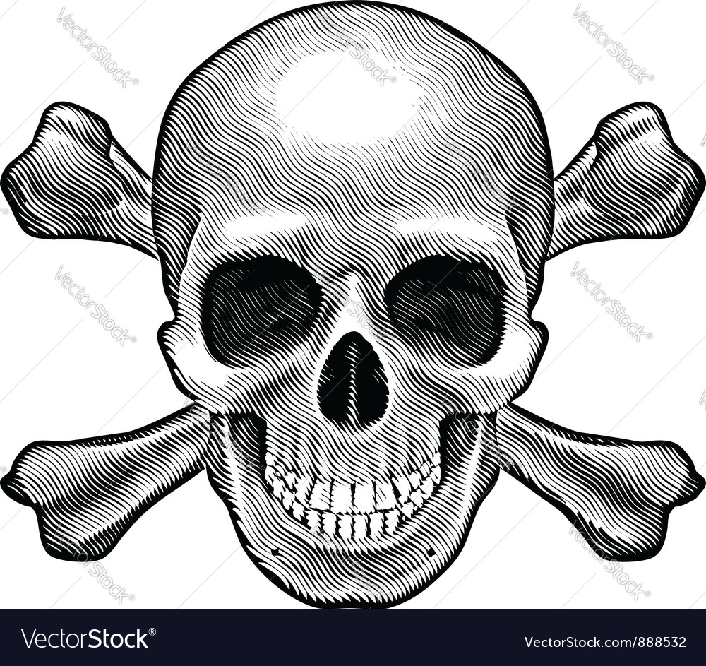Skull and crossbones figure vector
