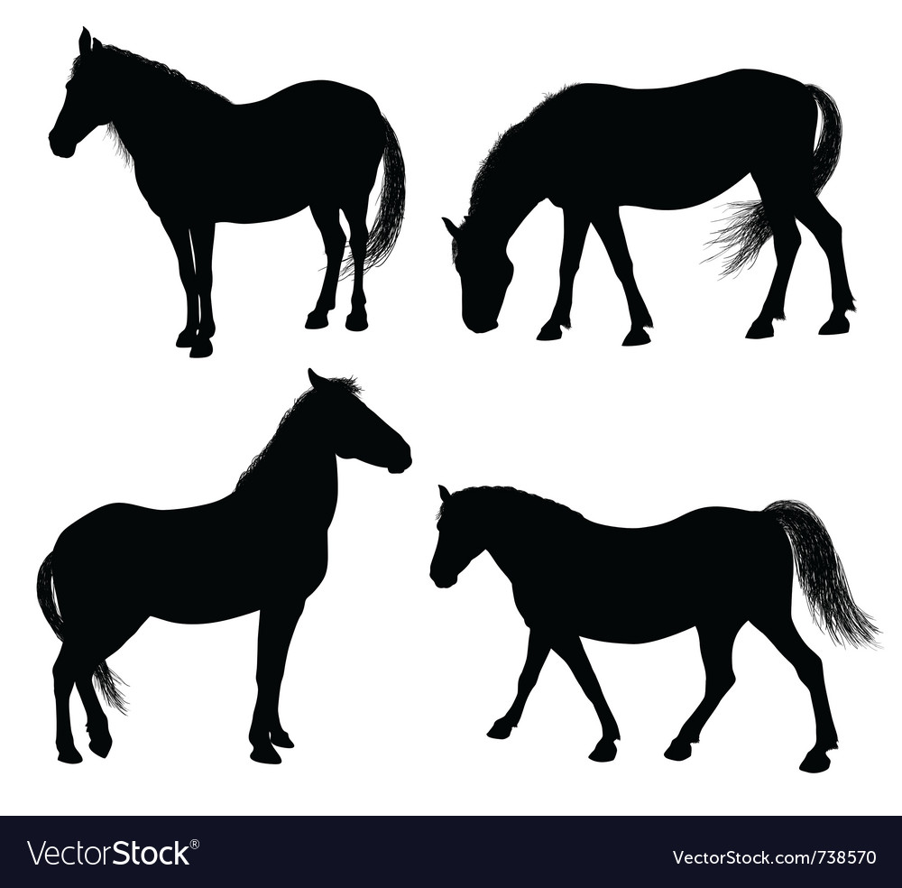 Detailed horse silhouettes vector