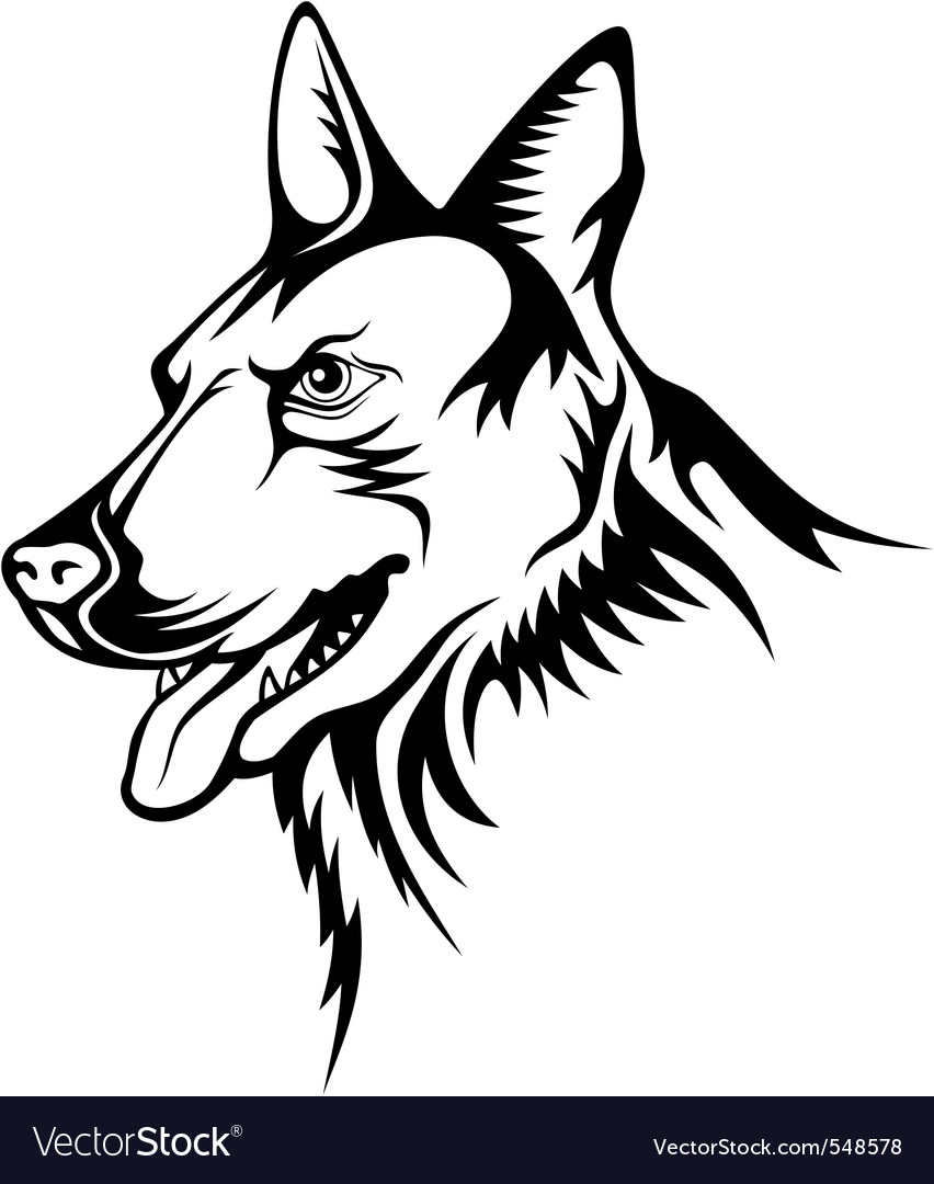 Contour Line Drawing Dog : German shepherd vector by sifis image  vectorstock