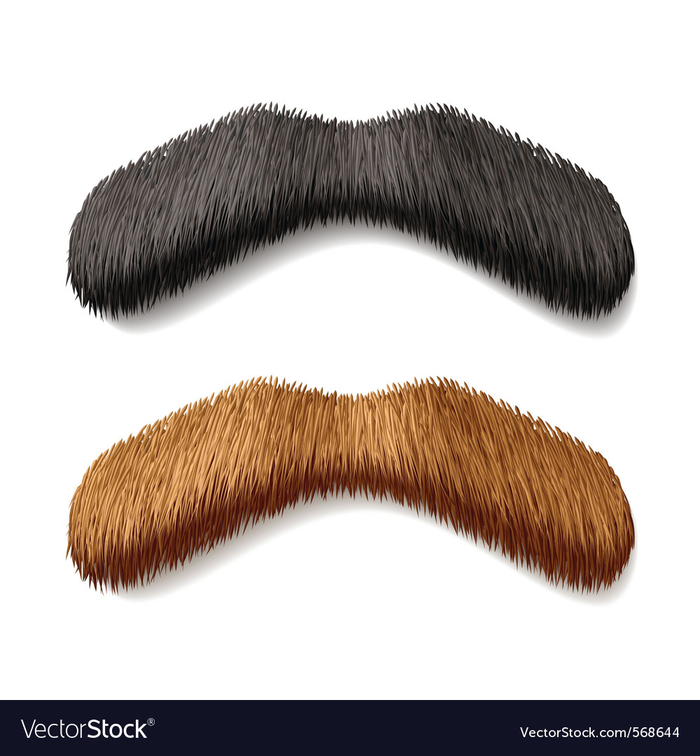Fake mustaches vector