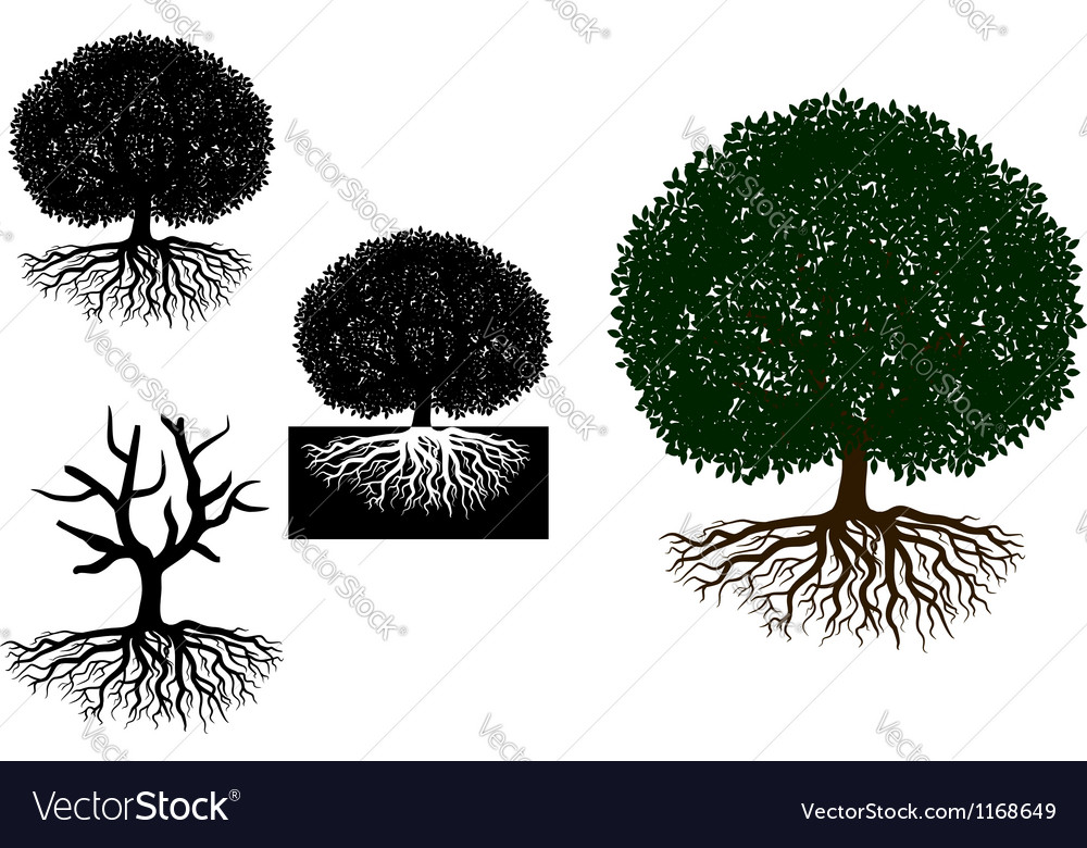 Big tree with roots vector