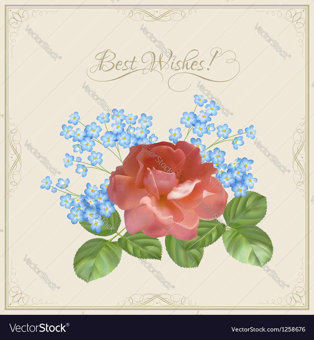 Vintage postcard with flowers decorative frame vector