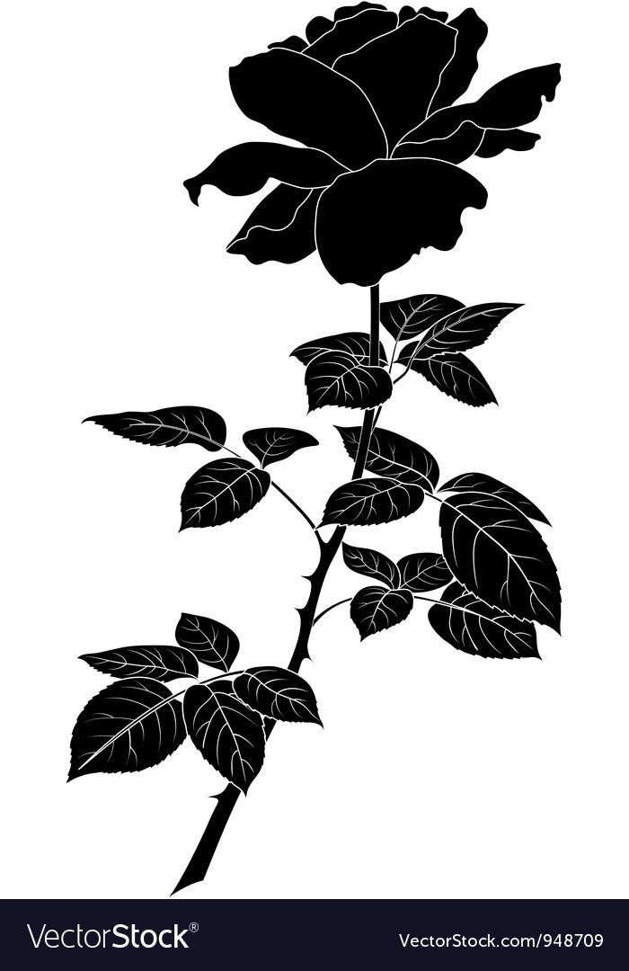 Flower rose silhouette vector by oksanaok image 948709