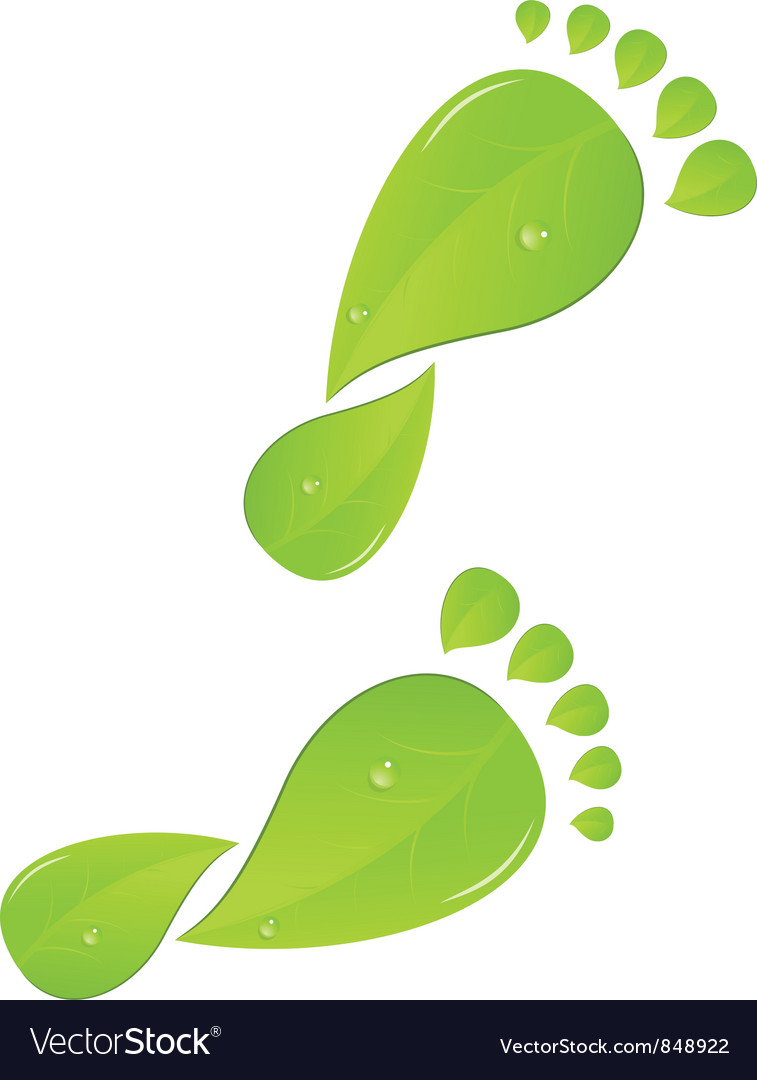 Green steps vector