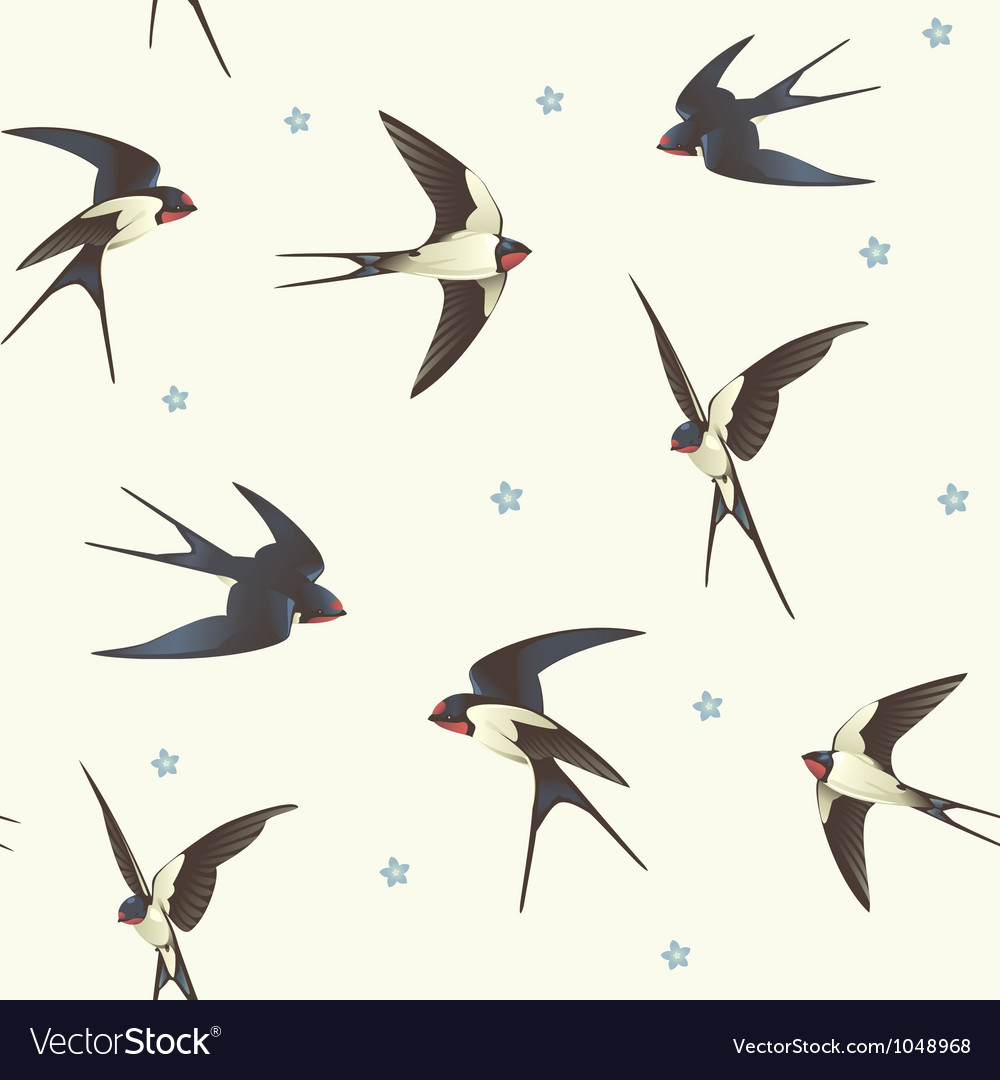 Pattern with swallows vector