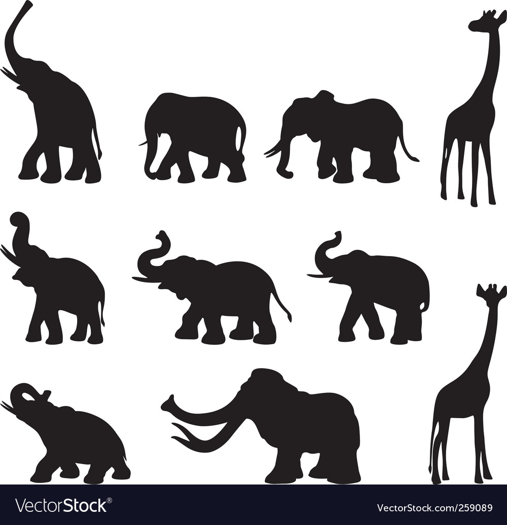 Elefants mammoth giraffe vector