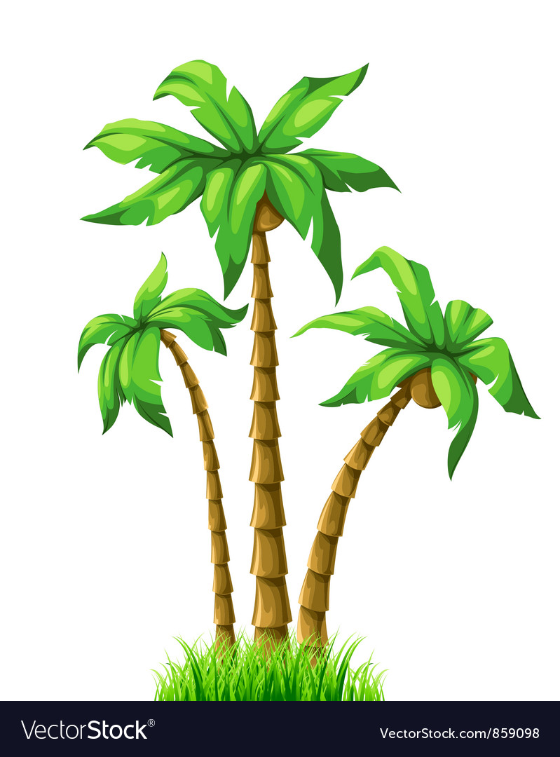 Free summer with palm trees vector