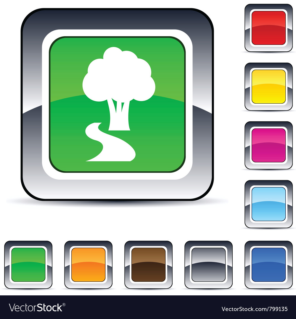 Tree square button vector