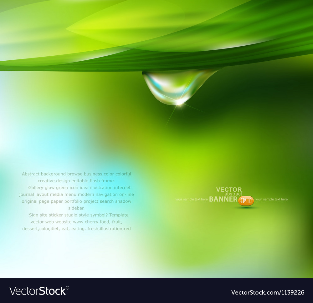 Drop of dew on a background vector