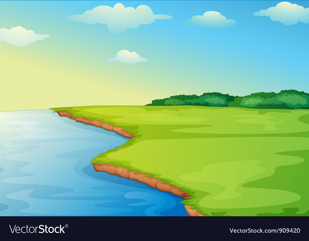 Open field vector