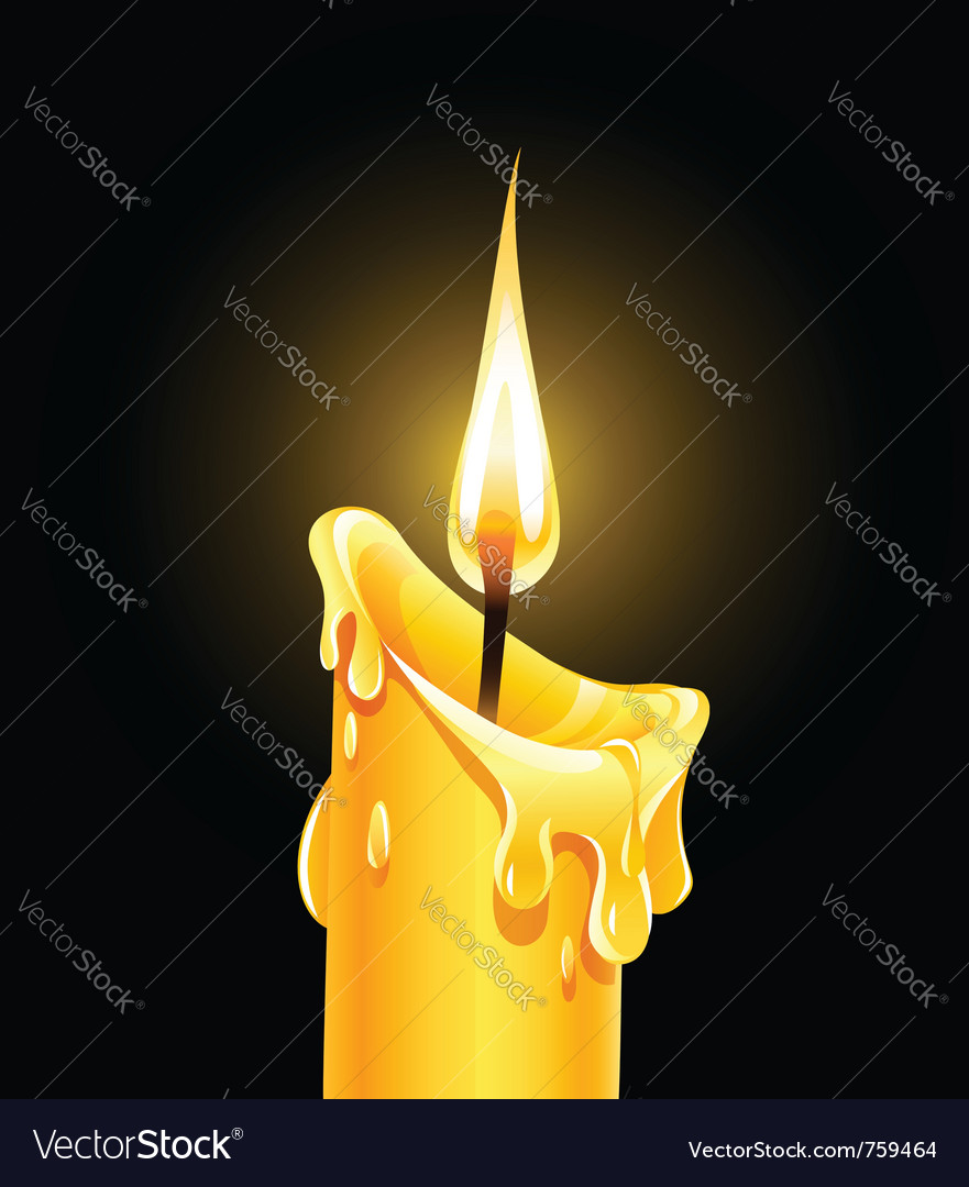 Fire of burning wax candle vector