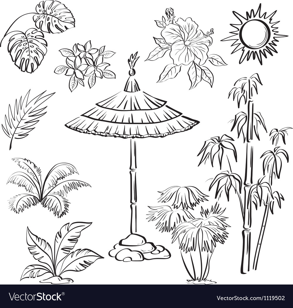 Exotic objects set outline vector