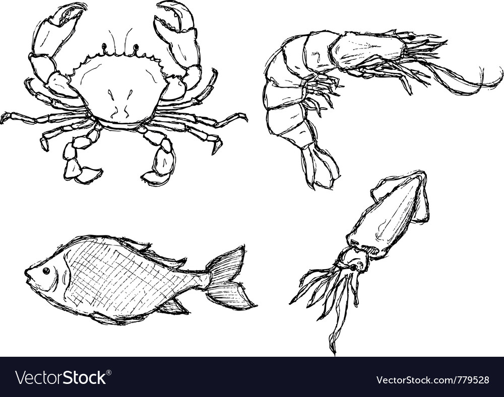 Scribble series  seafood vector