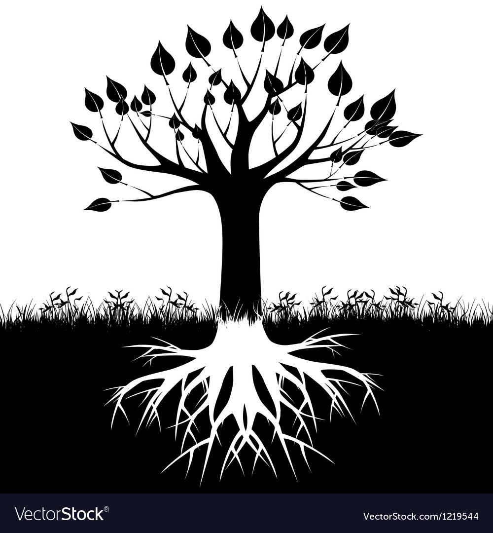 Tree roots silhouette vector