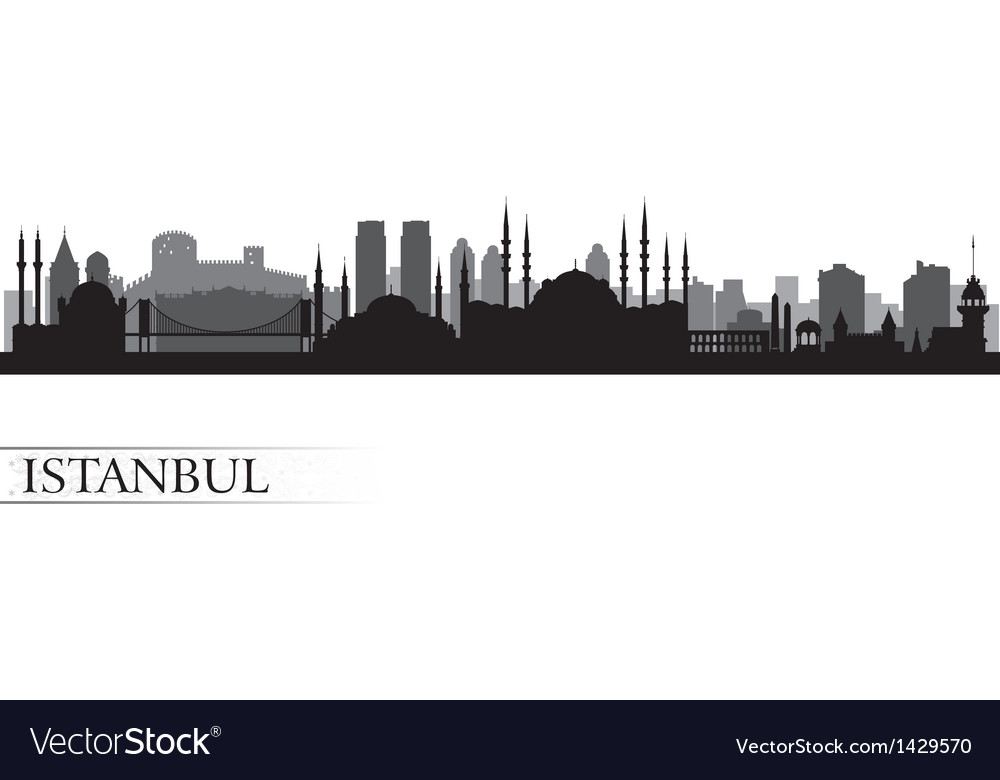 Istanbul city skyline detailed silhouette vector