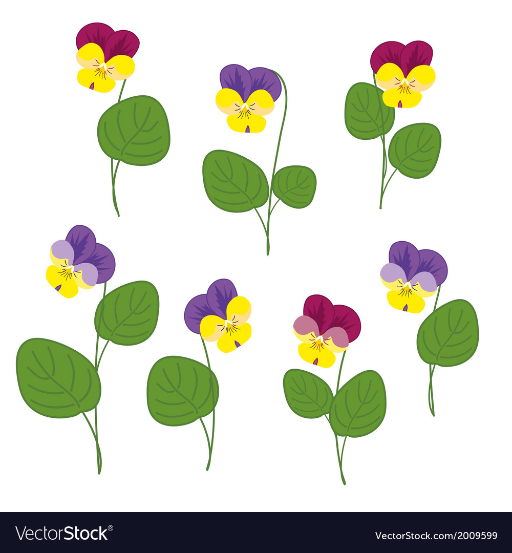 Forest violets on white background isolated object vector