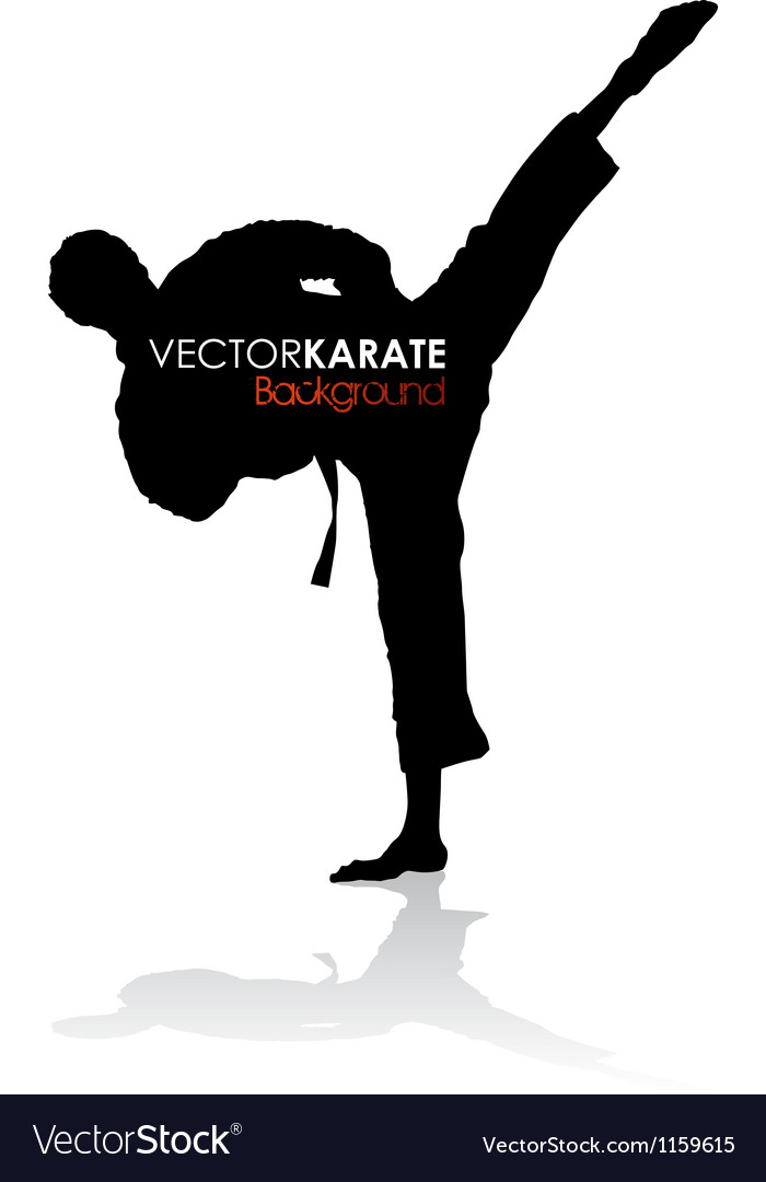 Karate background vector
