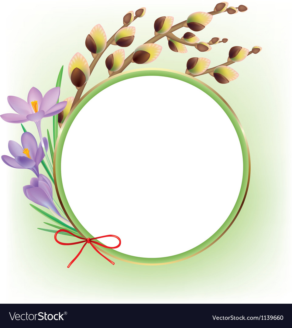 Spring composition vector
