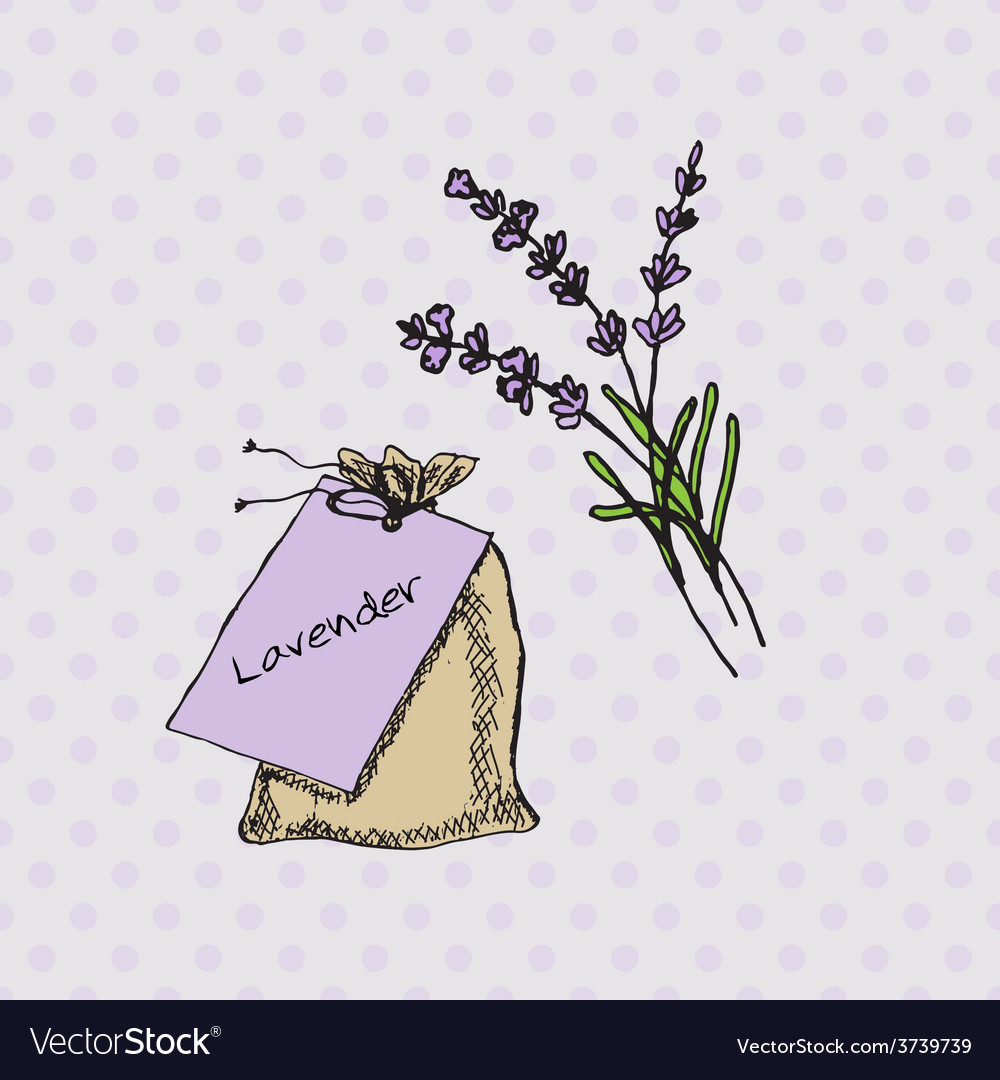 Health and nature collection lavender