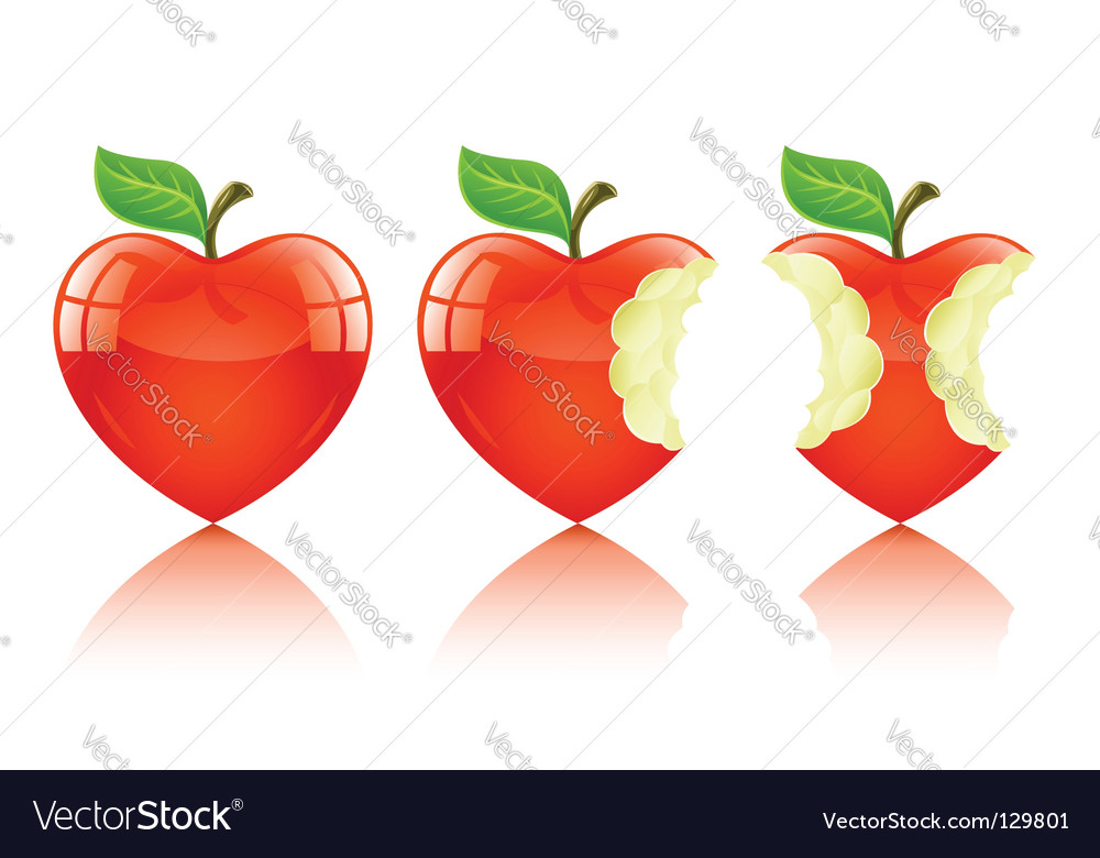 Love heart apple vector