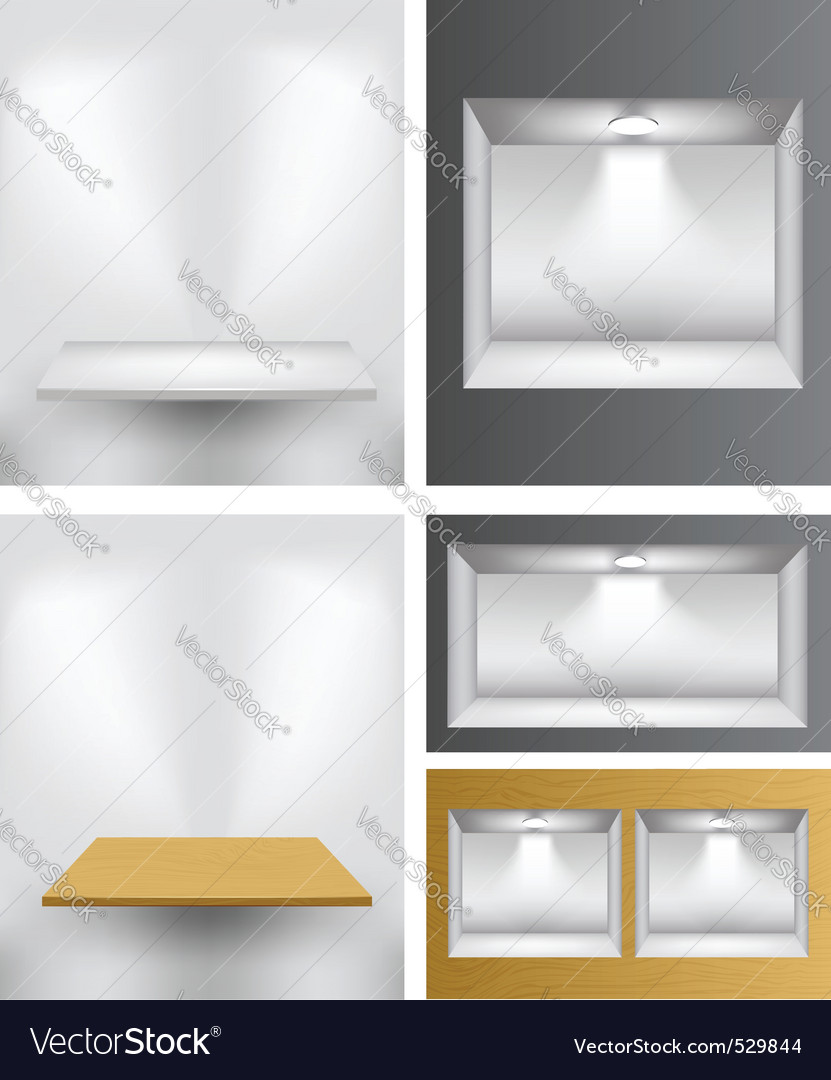 3d empty shelves vector