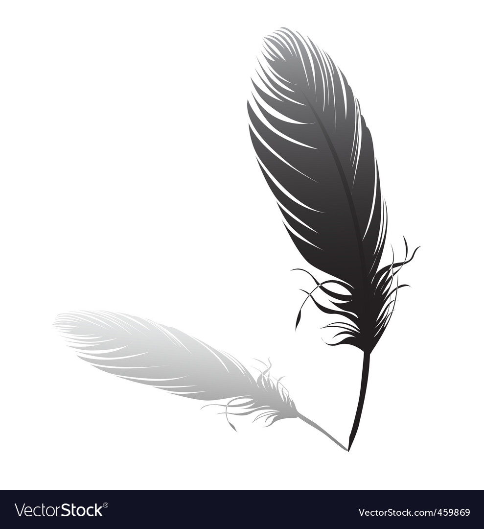 Feather and quilt vector