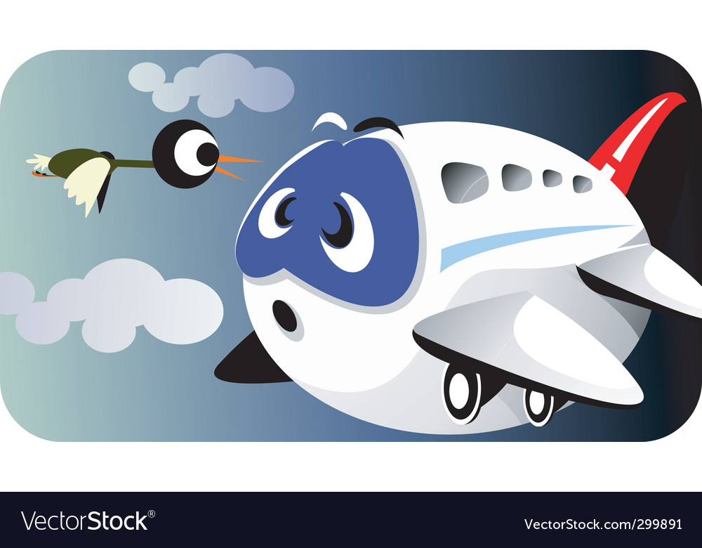 Aeroplane and bird vector