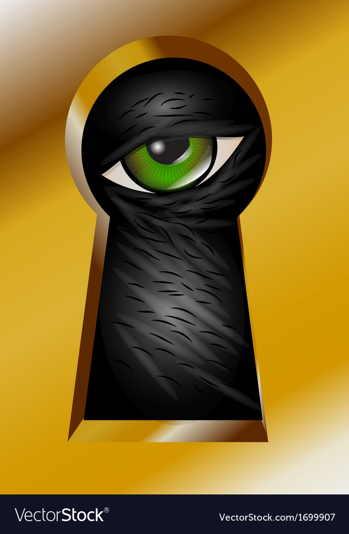 Keyhole and eye vector
