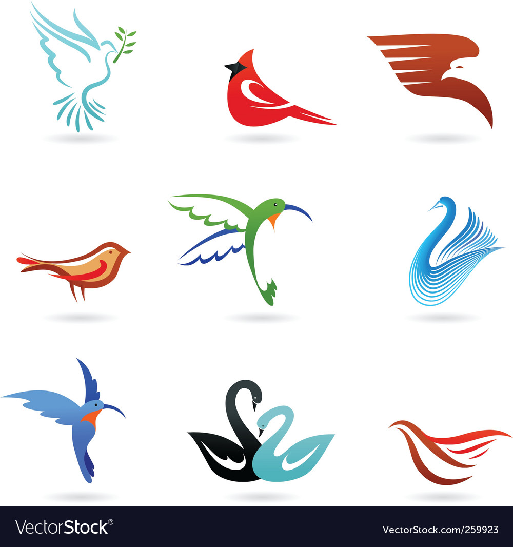 Bird graphics vector