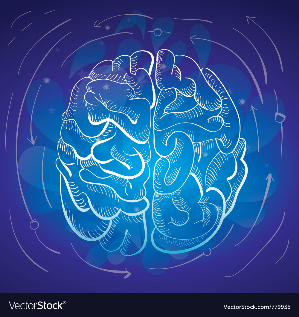 Brain and creativity vector