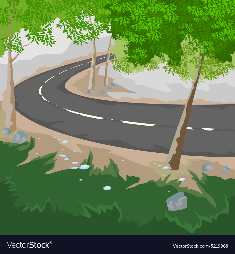 Forest and road